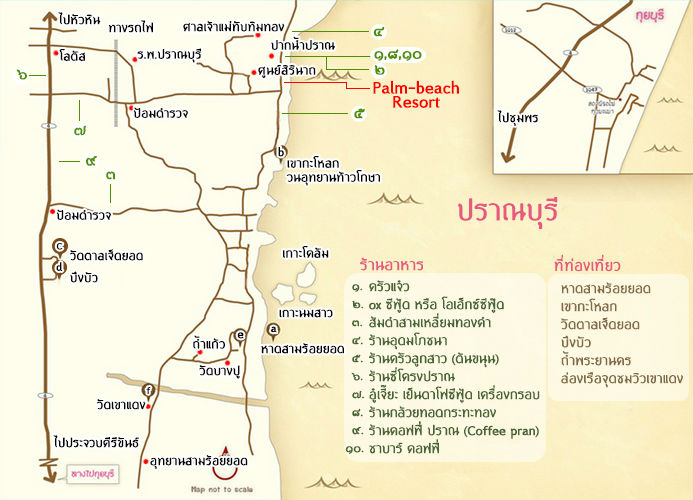 map_palm_80